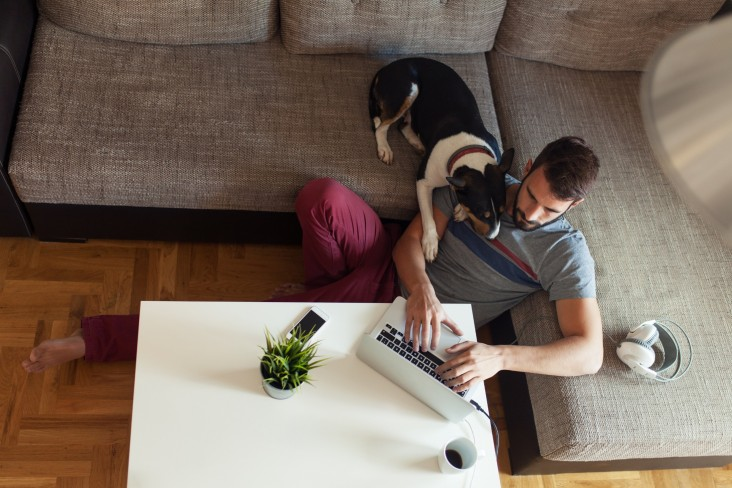 Men and dog work from home